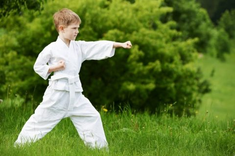 karate`2